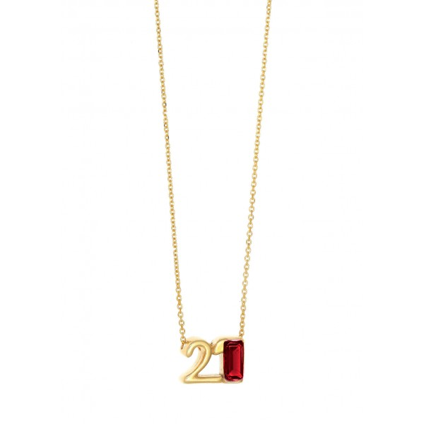 Necklace lucky charm 2021 silver 925 yellow gold plated with zirconia GRE-59756