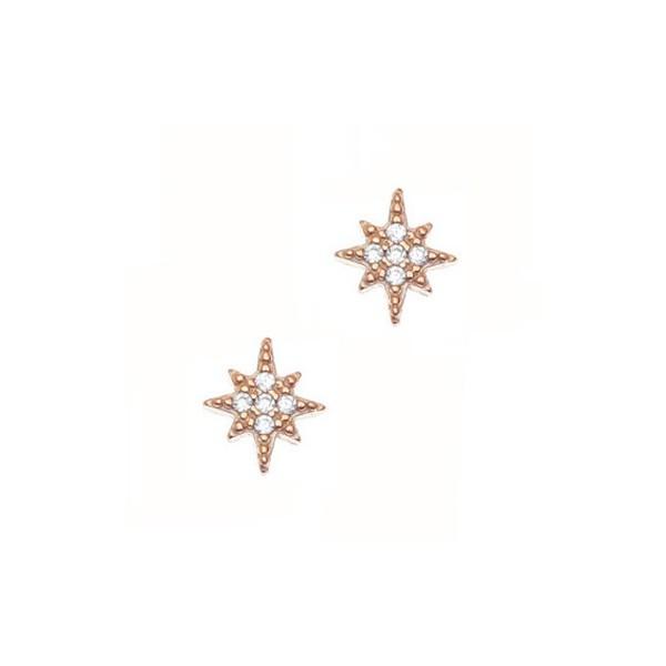 Σκουλαρίκια ασήμι 925 με ροζ επιχρύσωση και λευκά zirconia GRE-45707